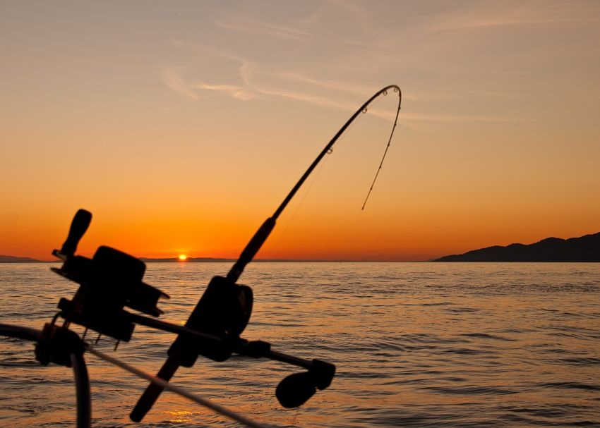 Best Fishing Charters