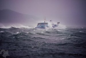 offshore fishing affected by recent storms