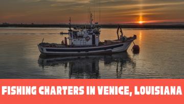 Fishing Charters in Venice, Louisiana