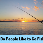 Why Do People Like to Go Fishing